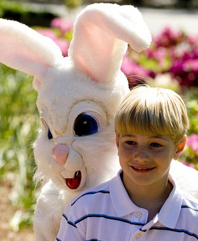 Creepy Bunny 5